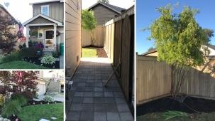 Yard Day 3